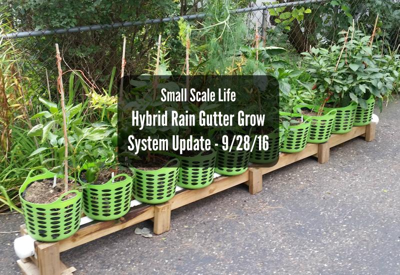 Hybrid Rain Gutter Grow System Update 9 28 16 Small