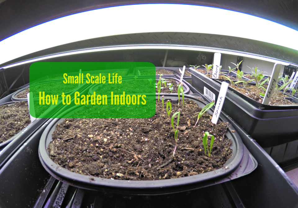How To Garden Indoors Small Scale Life
