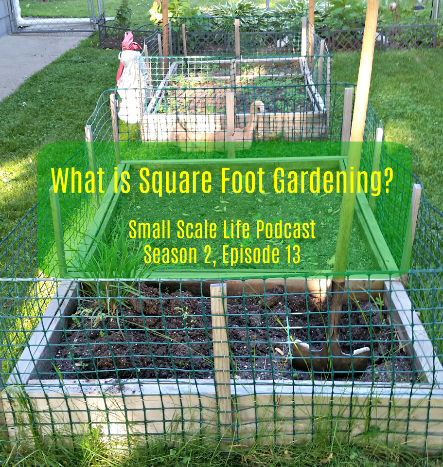 square foot gardening what is square foot gardening s2e13 small scale 29212